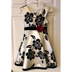 Dressy Holiday or Special Occasion Dress